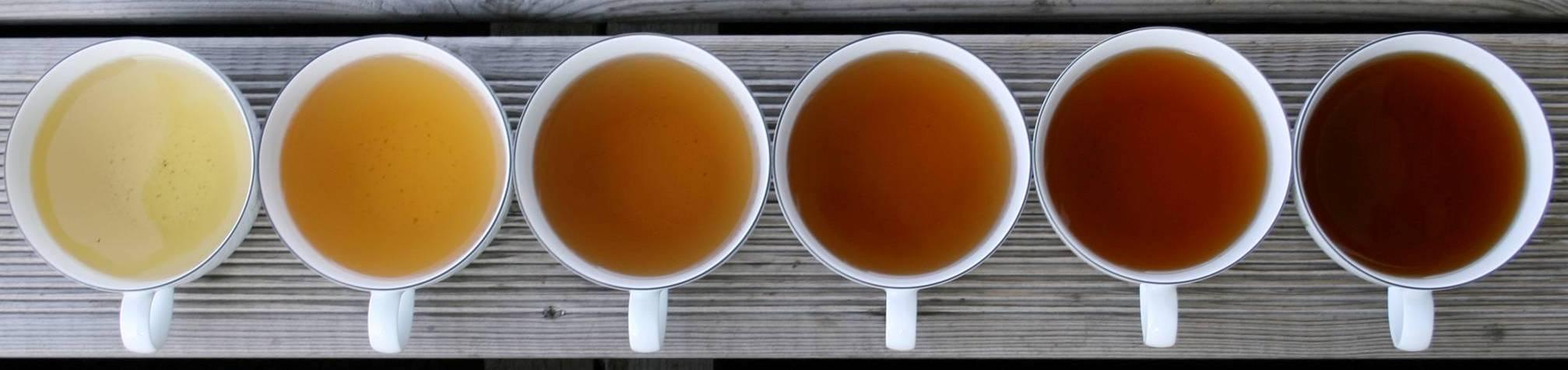 Startup-Info – Kirti Tea Trading – Assam Tea – Manufacturers